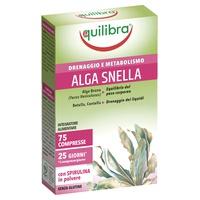 Alga Snella