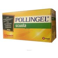 Pollingel Escuela
