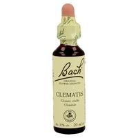 Flores de Bach 09 Clematis (Clematide)