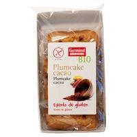 Plumcake de Cacao Bio sin Gluten