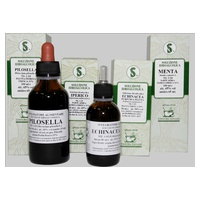 Verbena Odorous Hydroalcoholic Solution
