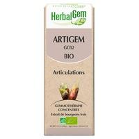Organic Artigem