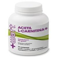 Acetil L Carnitina