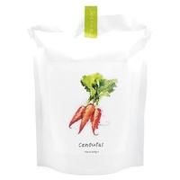 Carotte-Starter Bag