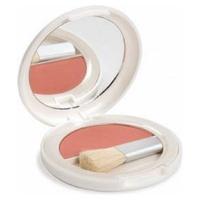 Blusher 450 Pink