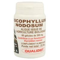 Alga ascophyllum nodosum 150 mg BIO