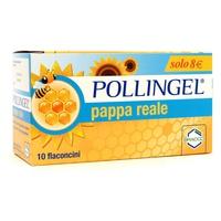 Pollingel jalea real