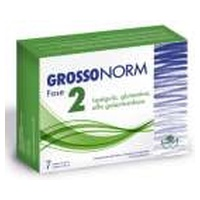 Grossonorm Phase 2