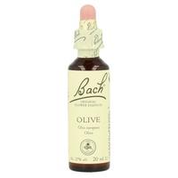 Bach 23 Flores de oliveira (Olive)