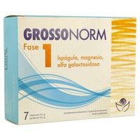 Grossonorm Phase 1