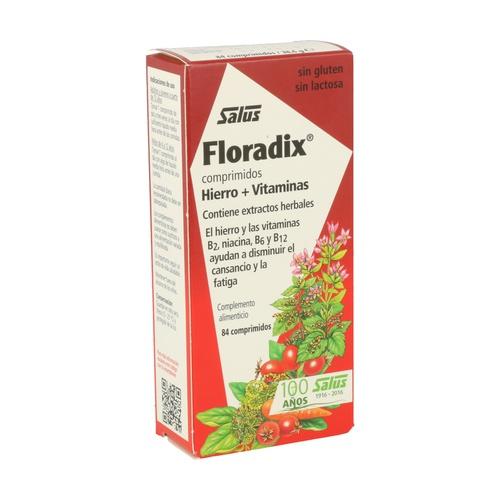 Floradix Hierro