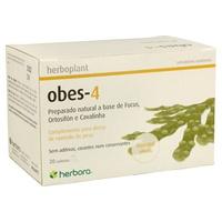 Herboplant Obes 4 Infuzja moczopędna