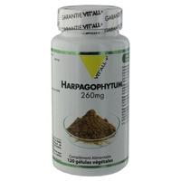 Harpagophytum (Wurzel) 260 mg