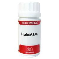 HoloMSM