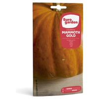 Mammoth Gold Pumpkin