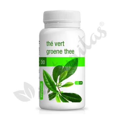 Té Verde Eco