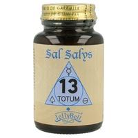 Sal Salys 13 TOTUM
