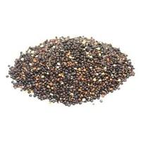 Quinoa Negra Eco Sin Gluten 100% Vega