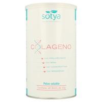 Colageno + Ácido Hialurónico + Msm