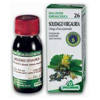 Solidago TM 26
