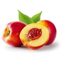 Nectarina Bio