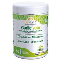 Garlic 2000