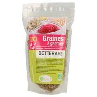 Graines à germer - Betterave rouge BIO