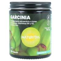 Garcinia avec vitamine B6, B2, chrome et zinc