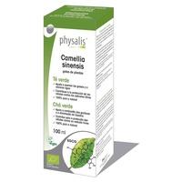 Green Tea Extract (Camelia Sinensis) Bio