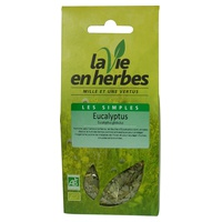 Ekologiczne liście eukaliptusa