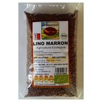 Semillas de Lino Marrón