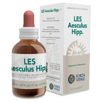 LES Aesculus Hippocastanum