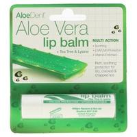Aloe Vera Lip Protector