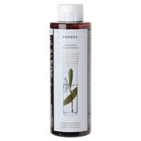 Shampoo anti-caspa e couro cabeludo seco - Laurel & Echinacea