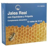 Jalea Real con Equinácea y Própolis