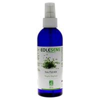 Organic Thyme Thymol Floral Water