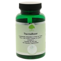 Thermoboost