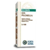 SYS Pilosella