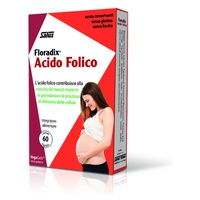 Floradix Folic Acid