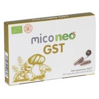 Mico Neo GST
