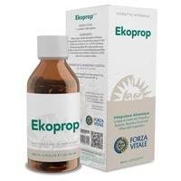 Ekoprop