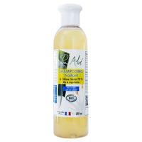 Champú Tratamiento de 70% Aloe Vera Bio