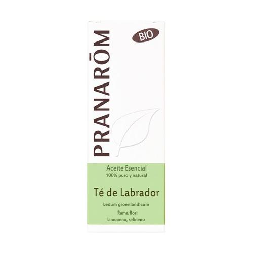 Aceite esencial de Té de Labrador