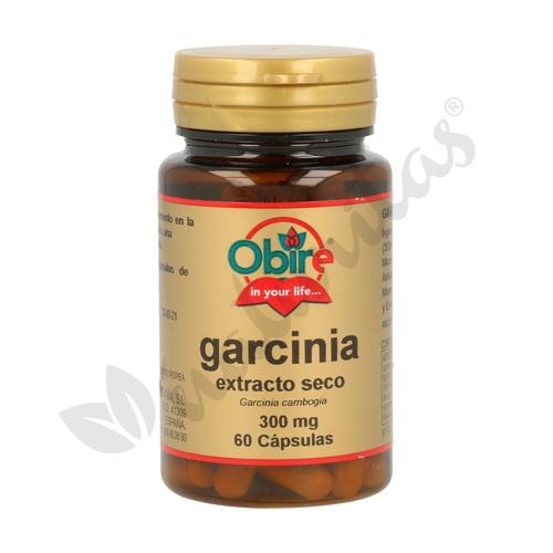 Garcinia Cambogia (Ext. seco)