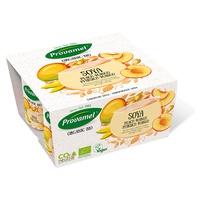 Soya Melocotón y Mango Bio