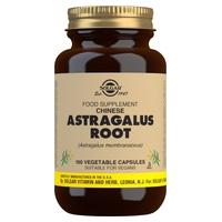 Astragalus Chino Raíz