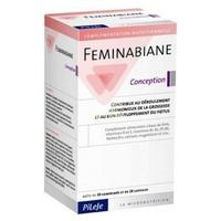 Feminabiane Concepción