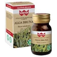 Alga bruna