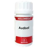 Holomega Audisol