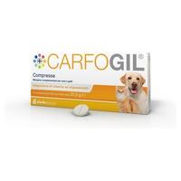 Carfogil